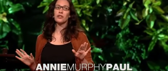 TED Talk – Annie Murphy Paul – What Babies Learn Before They Are Born