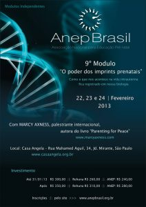 Flyer_Anep_9_SP